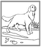 Dog coloring page Stock Images