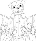 Dog Coloring Page Royalty Free Stock Images