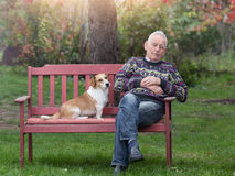 Dog comforting man Stock Images