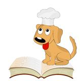 Dog a cook sits on an open book Royalty Free Stock Photography