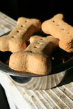 Dog Cookies Royalty Free Stock Photo