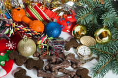 Dog cookies and toys in a Santa sock surrounded by Christmas dec Royalty Free Stock Photo