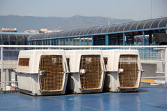 Dog crates Stock Image