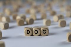Dog - cube with letters, sign with wooden cubes. Dog - wooden cubes with the inscription `cube with letters, sign with wooden cubes`. This image belongs to the Royalty Free Stock Image
