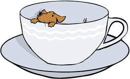 Dog in cup. Extremely small dog in a teacup Stock Photo