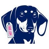 Dog Dachshund Hot Dog. Vector Illustration Stock Photos