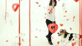 Dog Dancing With The Hostess On Valentine's Day. A trained dog is dancing with the hostess on Valentine's Day, hearts confetti fly stock footage