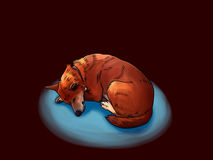 Dog in the dark Royalty Free Stock Image