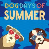 Dog days of summer. Time for adventure. Cute comic cartoon. Colorful humor retro style. Dogs in sunglasses enjoy beach fun leisure relax. Summertime vacation vector illustration