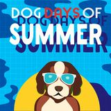 Dog days of summer. Dogs days of Summer Time for adventure. Cute comic cartoon. Colorful humor retro style. Dog in sunglass enjoy beach fun swimming pool Stock Photos