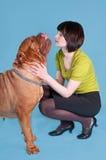 Dog de bordeaux and a girl Royalty Free Stock Photos