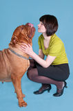 Dog de bordeaux and a girl Royalty Free Stock Image