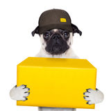Dog delivery post Stock Image