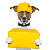 Dog delivery post Stock Photography