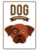 Dog design. Dog grafic  design , vector illustration Royalty Free Stock Image