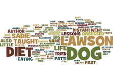 The Dog Diet Text Background  Word Cloud Concept Royalty Free Stock Photography