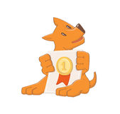 Dog with diploma Stock Image