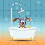 Dog with diving mask in bath Royalty Free Stock Photo