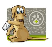 Dog at the doctor's. Cute illustration of first veterinary assistance dog Stock Images