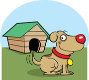 Dog with a dog house Royalty Free Stock Images