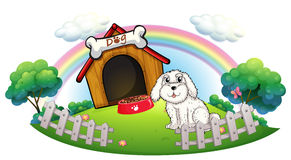 A dog in a dog house with fence Stock Image