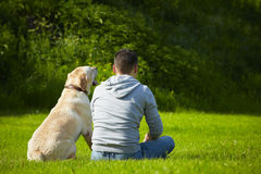 Dog with dog Royalty Free Stock Images