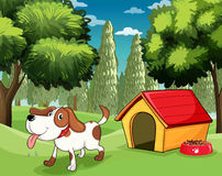 A dog with a doghouse and a dogfood near the trees Stock Image