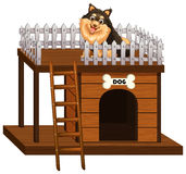 Dog and doghouse made of wood Stock Photo