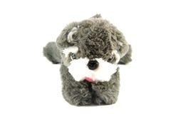 Dog doll Royalty Free Stock Photos
