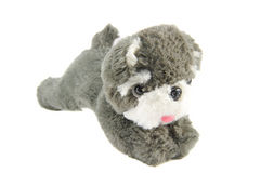 Dog doll Stock Image