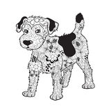 Dog doodle. Illustration `Dog` was created in doodling style in black and white colors. It  can be used for coloring books for adult Royalty Free Stock Photos
