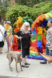 Dog and Drag Queens in Rainbow Dresses Gay Pride Parade Stock Images