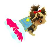 Dog in a dress. Dog a terrier in a dress and with a bow vector illustration