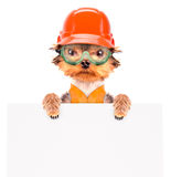 Dog  dressed as builder with banner Stock Photography