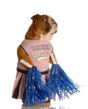 Dog dressed as a cheerleader Royalty Free Stock Photography