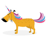 Dog dressed as a unicorn. Cute dog in uniform as magical rainbow Stock Image