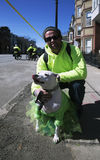 Dog dressed in green, St. Patrick's Day Parade, 2014, South Boston, Massachusetts, USA Stock Photo