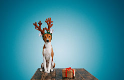 Dog dressed up as Christmas deer with present Stock Image