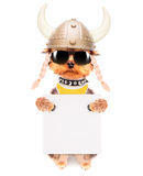 Dog dressed up as a viking with banner Stock Images