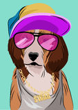 Dog dressed up in hip hop style, vector illustration Stock Photos