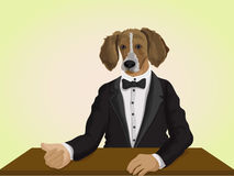 Dog dressed up in suit, Anthropomorphic design. Royalty Free Stock Photo