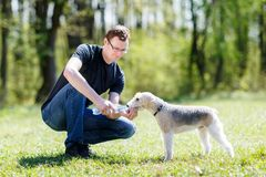 Dog drinking water from hands of men Stock Photography