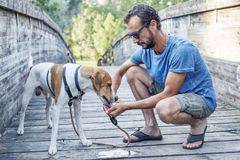 dog drinks from the hands of his master Stock Photography