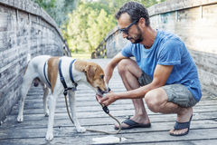 Dog drinks from the hands of his master Stock Image