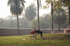 Dog eating from a garbage can. At the Shait Gumbad Mosque in Bagerhat, Bangladesh Stock Photography