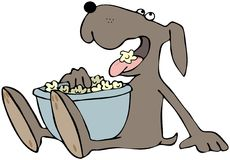 Dog Eating Popcorn. This illustration depicts a dog eating popcorn from a bowl in its lap vector illustration