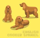 Dog English Cocker Spaniel Cartoon Vector Illustration Royalty Free Stock Images