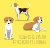 Dog English Foxhound Cartoon Vector Illustration Stock Images