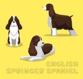 Dog English Springer Spaniel Cartoon Vector Illustration Royalty Free Stock Photos