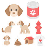 Dog equipment set icons in cartoon style. Big collection dog equipment vector symbol stock illustration Royalty Free Stock Images